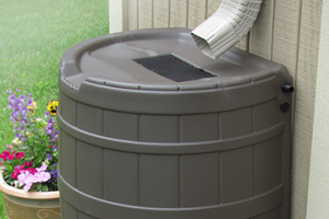 Rain Barrels: Collecting Rainwater with Ease